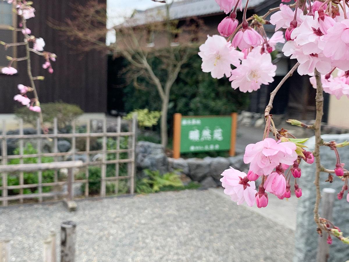 大源寺春の供養祭の様子01